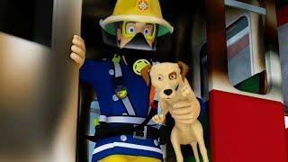 Strażak Sam Nowe odcinki | Ratowanie zwierząt - Praca zespołowa ratuje 🔥 Bajka dla dzieci po polsku