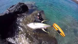 Spearfishing Hawaii Blue Water Hunta!