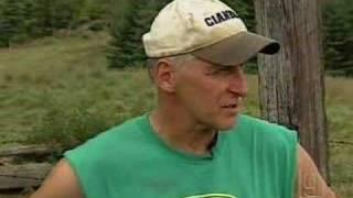 N.H. Farmer Hopes For Cow's Return