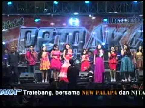 New Pallapa Live In Petraka Tratebang 2014 - Hello Dangdut