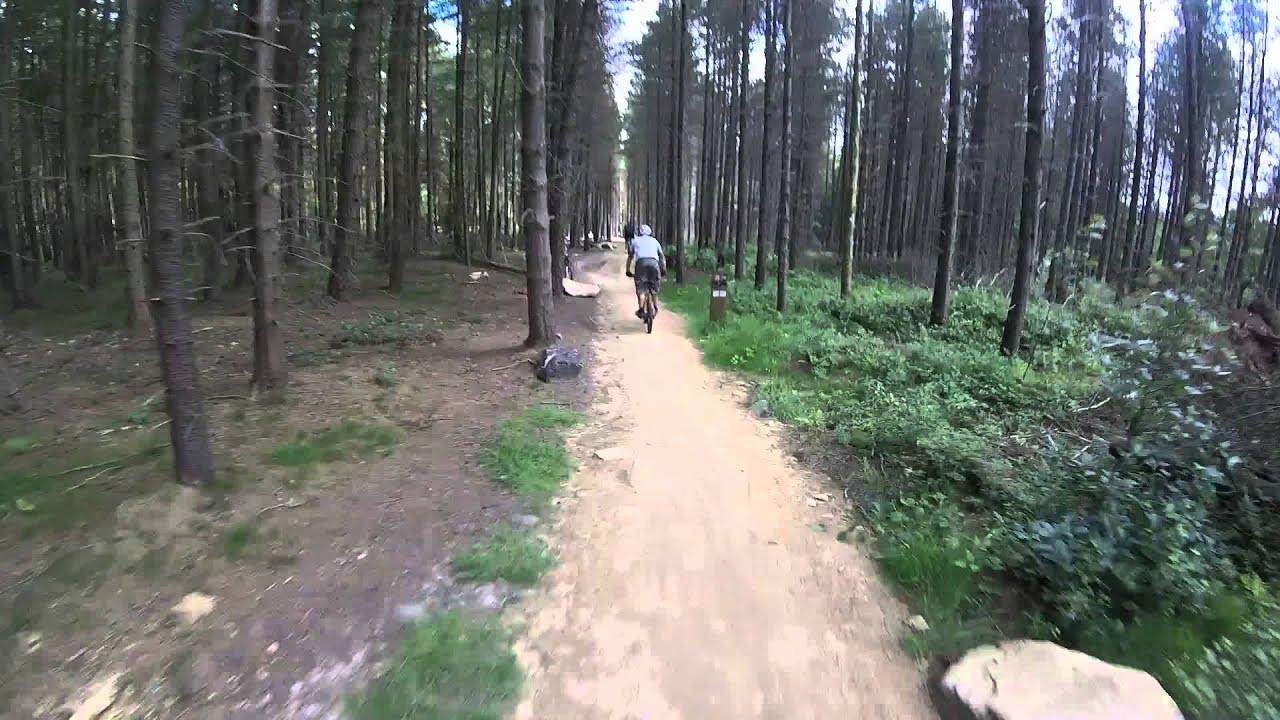 Grenosdie woods