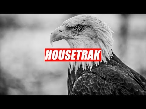 Hot Bullet, Alex Senna, Nogue, Borgges - This Is America (Booty)