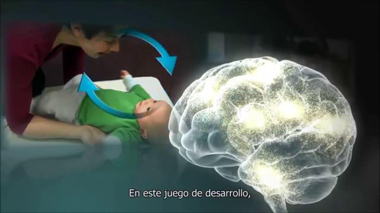 child brain development