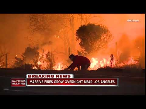 Southern California Wildfire: Driver pulls over to save wild rabbit from flames