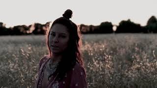 Dee VanHellemond - Wolf