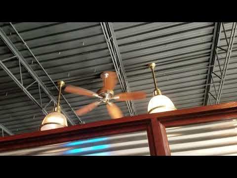 hampton-bay-ceiling-fans-in-a-restaurant