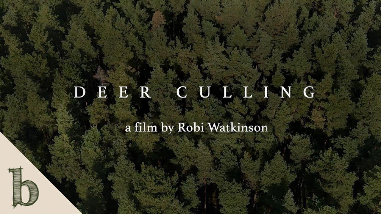 Deer Culling   Short Wildlife Documentary