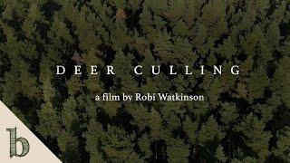 Deer Culling | Short Wildlife Documentary