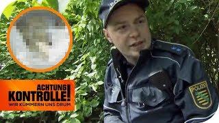 Drogenhund schlägt an: Was findet die Polizei im Stadtpark? | Achtung Kontrolle | kabel eins