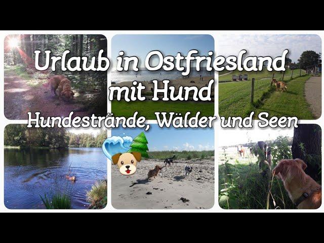 URLAUB mit HUND in Ostfriesland / Nordsee / Geheimstrand / Wanderwege