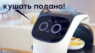 Умные котики // Живые роботы // Марс ждет!