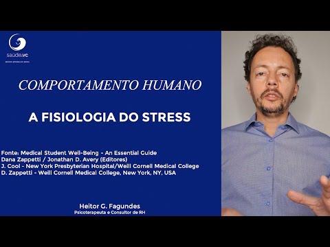 Stress: O que acontece com nosso corpo quando estamos estressados?