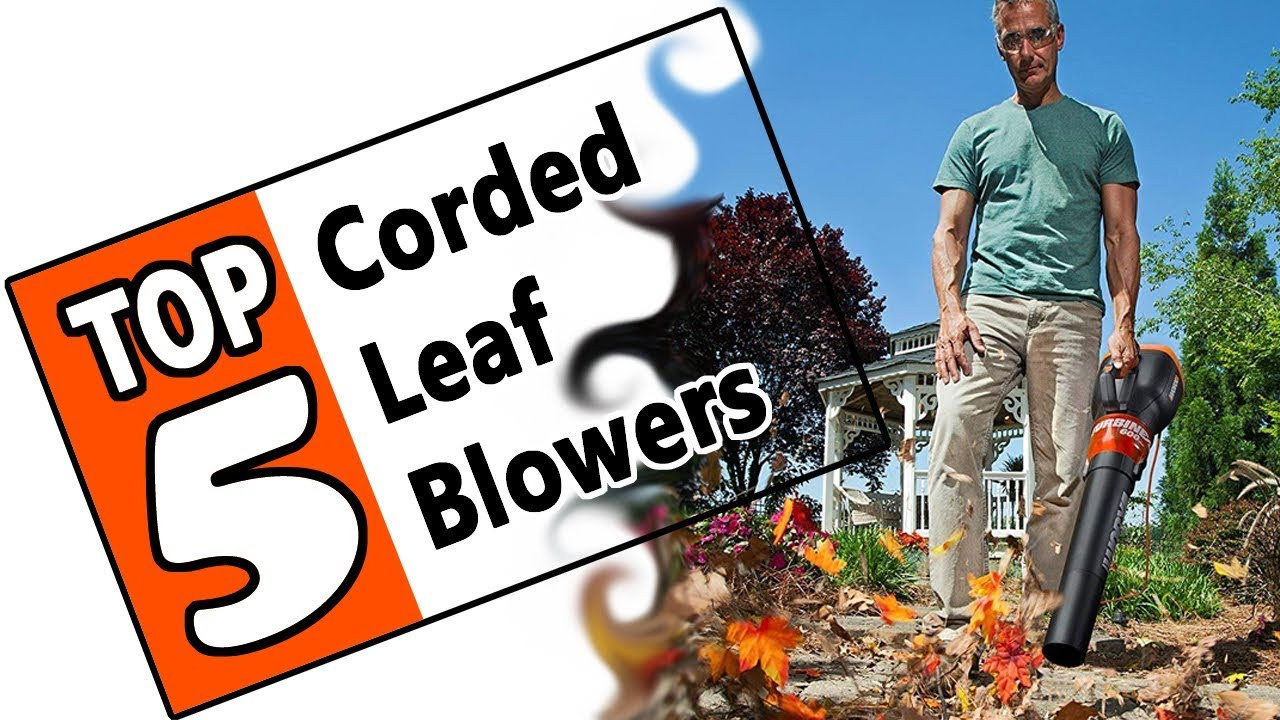 Best Corded Leaf Blower 2019 🌻 Best Corded Leaf Blower 2019   Review Of The Top 5 Electric