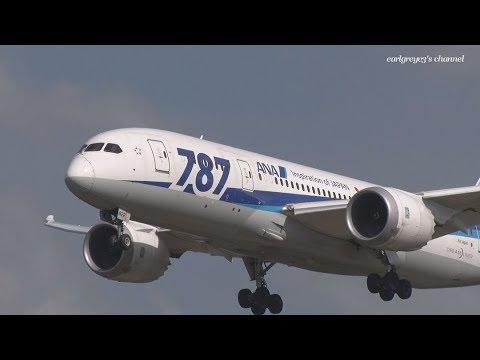 All Nippon Airways (ANA) Boeing 787-8 Dreamliner JA822A 成田国際空港 着陸 2018.4.8