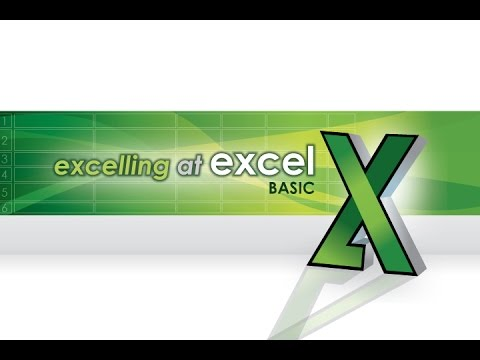 Excelling in Excel: Basics