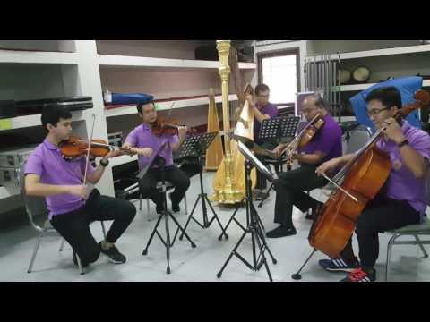 Momentum  with friend (harp : pansa)