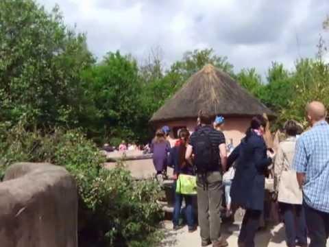 Bei mehren Anlagen im  Erlebnis Zoo Hannover 2013