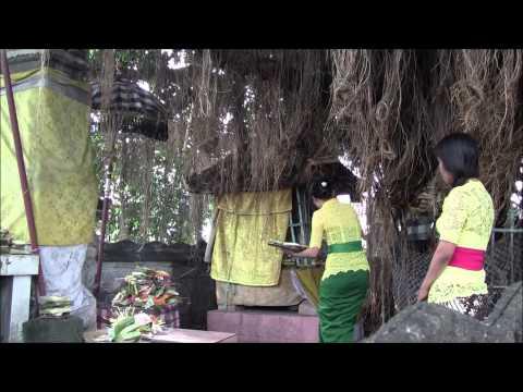 Denpasar & Nusa Dua, Bali A Day in Life2