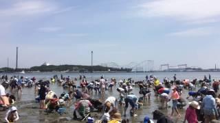 2017.04.29 海の公園で潮干狩りへ行って来ました。 詳細は下記のブログ...