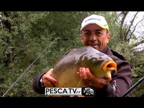 Saratov che pesca su un mangiatore