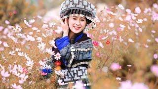 Hmong song: Paub koj yeej tsis hlub