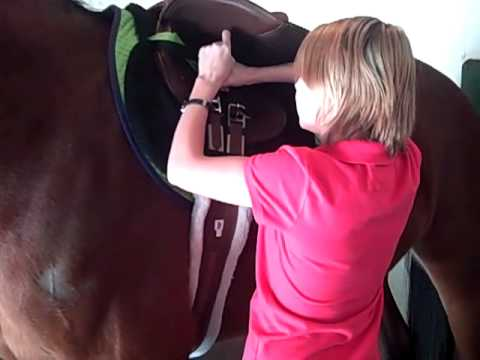 How To Put A Saddle And Bridle On A Horse