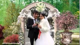 поздравления со свадьбой прикольные видео