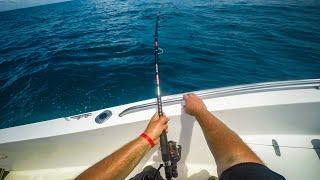 SHARK FISHING Two SHARKS at Once