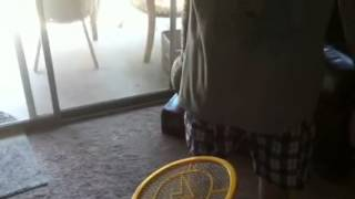 Touching electric fly swatter part 2