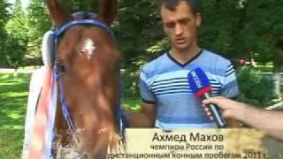 Конные пробеги в Малкинском конном заводе.mp4