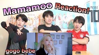 【MAMAMOO(마마무)~Gogo bebe~】일본인이 한국어로 하는 K팝 리액션!!