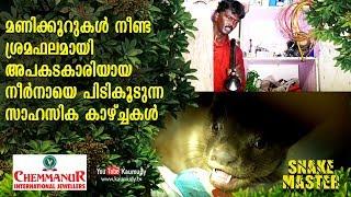 Wow! Dangerous Otter caught after Battling for hours | Snakemaster | Vava Suresh | EP 413