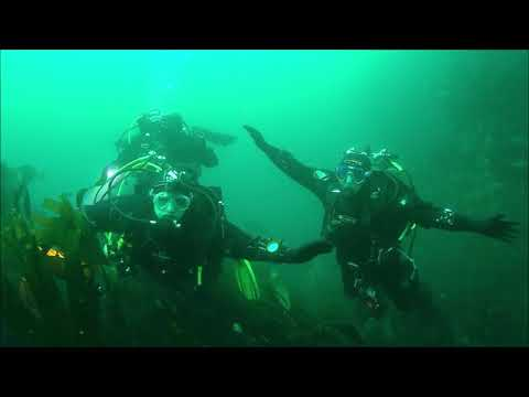Scarfskerry - Ness Divers -  05 08 18