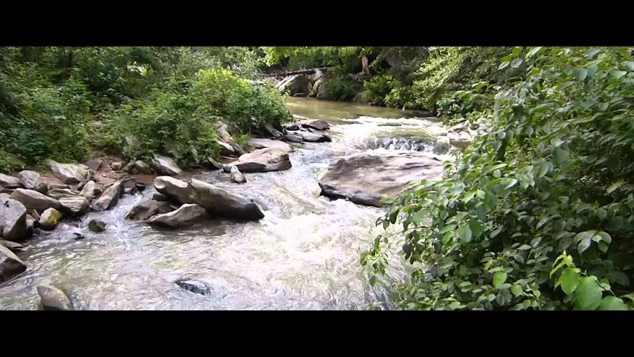 travel ga creek cabins near steemit cabin georgia towns helen freedomcoin