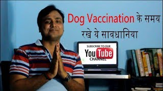 Dog Vaccination: Things to Remember (Hindi)