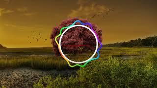 Download Tere Sang Yaara ringtone | Best Ringtones download Free for mobile.mp3