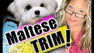 HOW to TRIM a MALTESE at HOME! (Trimming your DOG at home) BASIC DOG GROOMING Tutorial