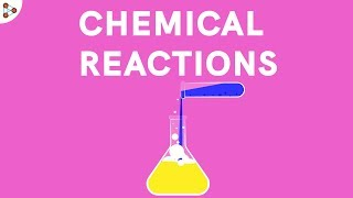 Introduction to Chemical Reactions and Equations | Don't Memorise