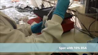 Gambar cover How to do Immunohistochemistry