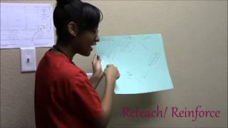 Kiera Brown Tafe Lesson Plan Competition: Transformation Of A Butterfly