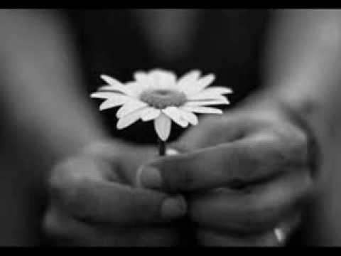Cavatina (He Was Beautiful) - Violetta Carstea - violin