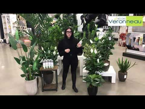 How to clean artificial flowers and plants with Magik Klean