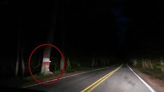 something terrifying caught on camera... on America's most h…