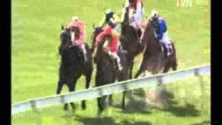Black Caviar - 3 from 3 - MV William Crockett Stakes-LR