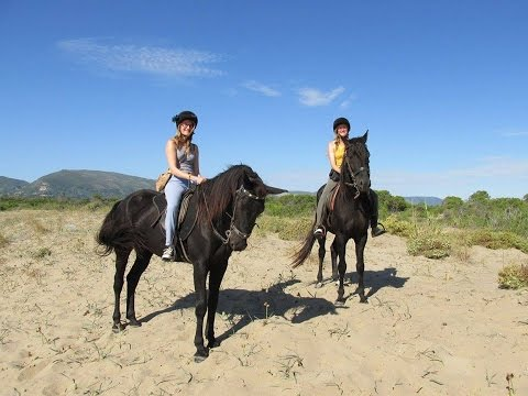 Horse Riding in Zante, Greece. | Laganas Horse Riding