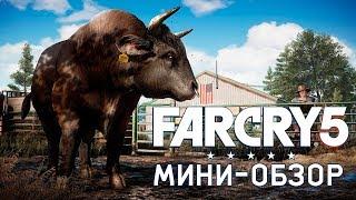Far Cry 5 | Обзор за 5 минут