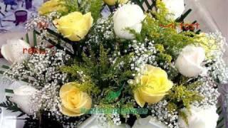 Flori frumoase si vorbe intelepte