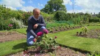 Normandie : le jardin des Oubliées
