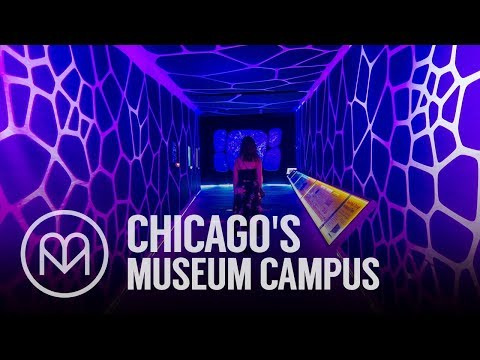 Chicago's Museum Campus