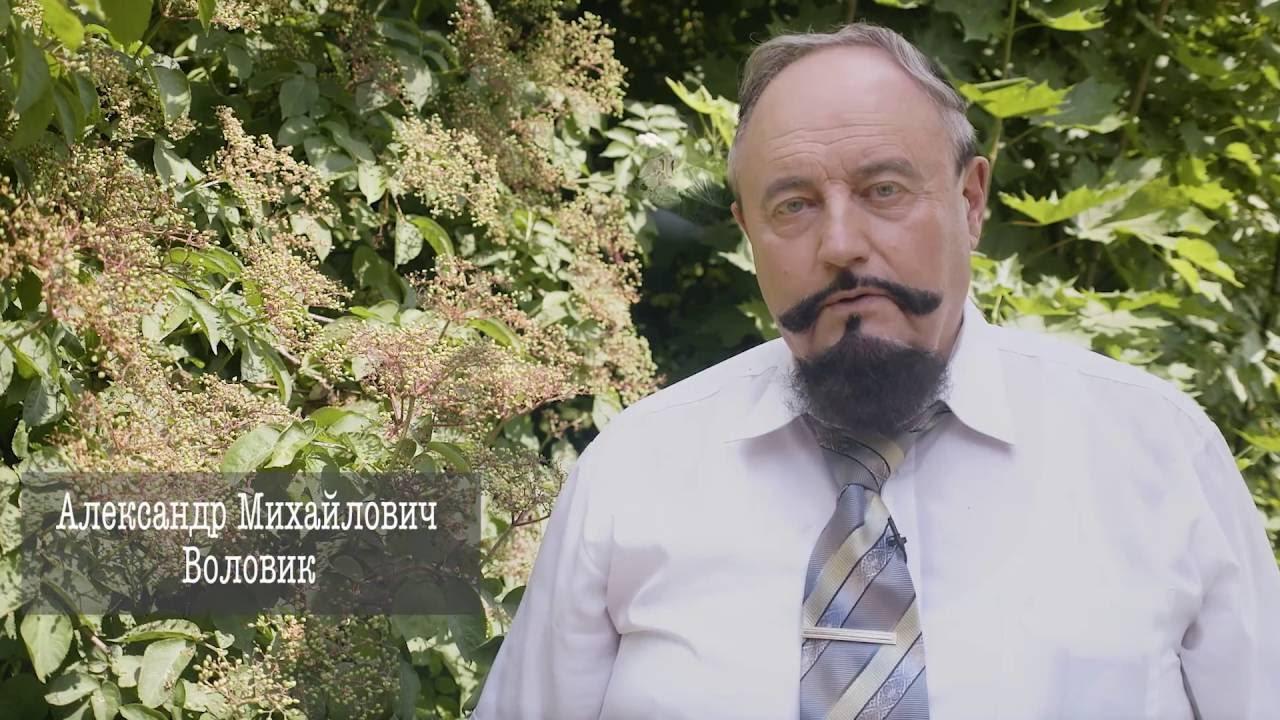 """Эпизод второй: """"В огороде бузина""""..."""